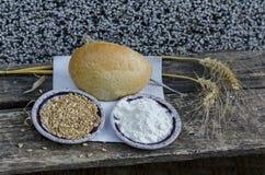 麦子、五谷和面粉的耳朵在老桌 免版税库存图片