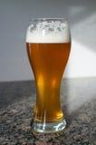 麦子与泡沫的啤酒杯 免版税图库摄影