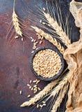 麦子五谷和小尖峰在生锈的背景 库存照片