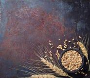 麦子五谷和小尖峰在生锈的背景 免版税库存照片