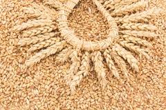 麦子五谷和麦子耳朵花圈  库存图片