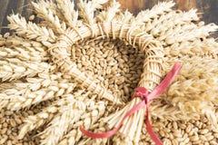 麦子五谷和麦子耳朵花圈  免版税库存照片
