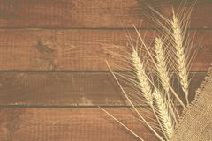 麦子五谷在被风化的木背景的与拷贝空间 f 免版税库存照片