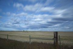 麦子农场 免版税库存图片