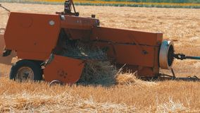 麦子卸载麦子的收获组合入牵引车拖车在收获期间 影视素材