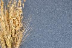 麦子和大麦的明亮耳朵在灰色花岗岩背景  库存照片