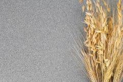 麦子和大麦钉在灰色花岗岩背景  库存照片