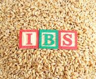 麦子和肠易激综合症(IBS) 免版税图库摄影