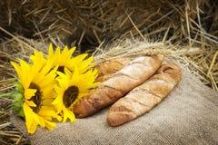 麦子和面包的耳朵 免版税图库摄影