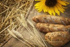 麦子和面包的耳朵 库存图片