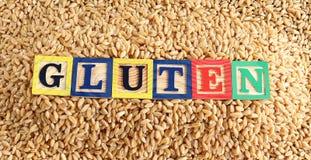 麦子和面筋 免版税图库摄影