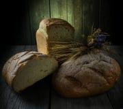 麦子和黑麦,麦子耳朵面包  免版税图库摄影