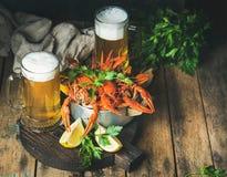 麦子啤酒和煮沸的小龙虾用柠檬,新鲜的荷兰芹 库存图片
