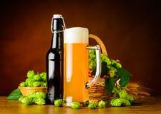 麦子啤酒和蛇麻草花 免版税库存图片