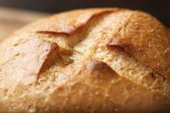 麦子小圆面包特写镜头 免版税库存照片
