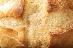 麦子小圆面包特写镜头 免版税库存图片