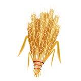 麦子捆 免版税库存照片