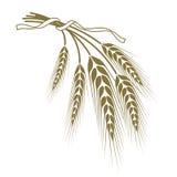 麦子栓与丝带 皇族释放例证