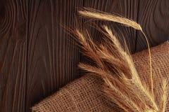 麦子的小尖峰在木背景的 库存图片