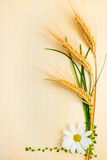 麦子的耳朵与春黄菊和草的在木纹理 免版税图库摄影