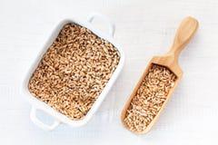 麦子种子充分的木瓢在白色木背景的 库存图片