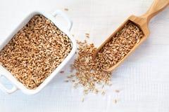 麦子种子充分的木瓢在白色木背景的 免版税库存图片