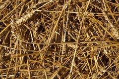 麦子秸杆堆纹理 库存照片