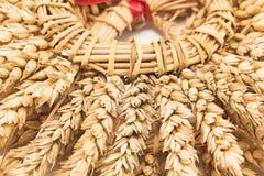 麦子,细节的耳朵花圈  图库摄影