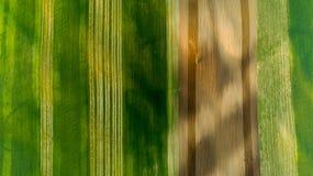 麦田和庄稼鸟瞰图在与拖拉机的夏天在工作 免版税库存图片
