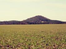 麦田和被环绕的小山 足迹在春天领域 库存图片
