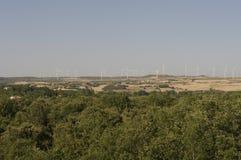 麦田和风轮机 免版税图库摄影