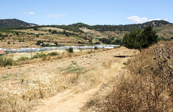 麦田在巴塞罗那的郊区 图库摄影