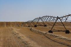 麦田收获与枢轴灌溉系统 免版税库存照片