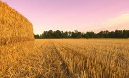 麦田收获了与干草捆在日落-塞扎迪奥-皮耶蒙特 库存照片