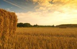 麦田收获了与干草捆在日落-塞扎迪奥-皮耶蒙特 免版税库存照片