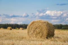麦田的黄色干草堆在美丽的蓝色多云天空下 库存照片