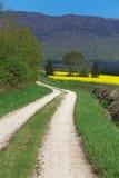 麦田风景和油菜籽在登上朱拉背景中在法国 库存图片