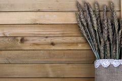 黑麦的耳朵花束在帆布的 免版税图库摄影