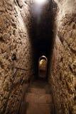 麸皮城堡在Transilvania罗马尼亚 免版税库存图片