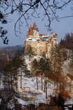 麸皮城堡 免版税图库摄影