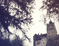 麸皮城堡 库存图片