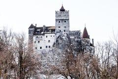 麸皮德雷库拉城堡冬天季节 库存照片
