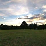 黄昏在公园,伦敦 免版税库存照片
