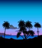 黄昏热带例证的海岛 向量例证