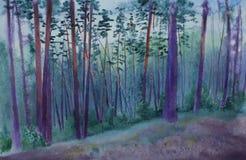 黄昏的杉木森林 皇族释放例证