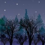 黄昏的森林 与第一个星的风景 向量例证