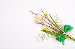 黄水仙春天花束和在白色背景的一棵杨柳 免版税库存照片