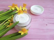 黄水仙水仙化妆手工制造有机奶油一种桃红色木萃取物 免版税图库摄影