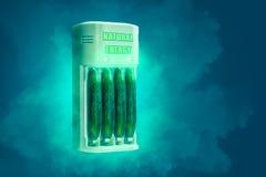 黄瓜充电 库存图片