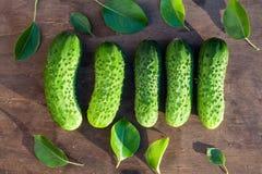 黄瓜和叶子在木头 免版税图库摄影